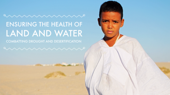 <br /><br /> Ensuring the Health of Land and Water<br /> Combating Drought and Desertification