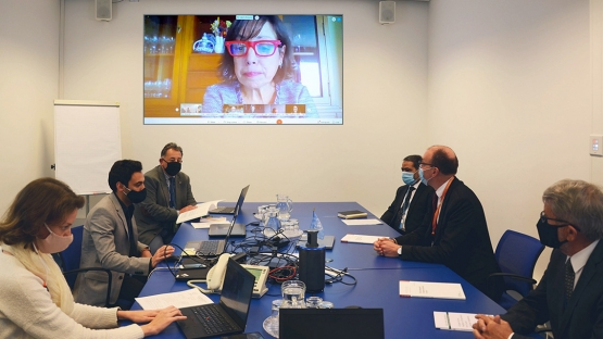 Isabel Villanueva (screen), Head of the Cabinet of the Secretary General in Spain's Nuclear Safety Council, addresses participants of the IAEA virtual technical meeting on regulatory processes held from 27 to 30 October 2020.