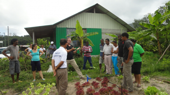 World Environment Day: IAEA supports the Seychelles with irrigation and soil management