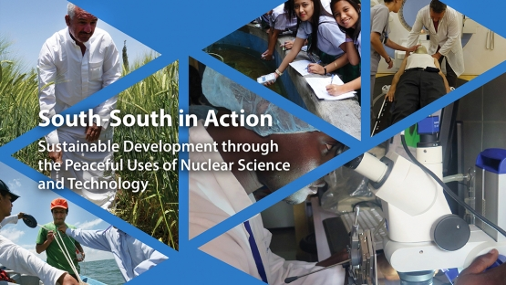 IAEA Launches Report Highlighting Achievements in South-South and