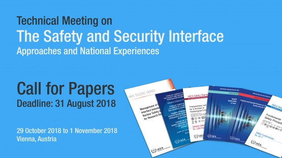 Technical Meeting on the Safety and Security Interface