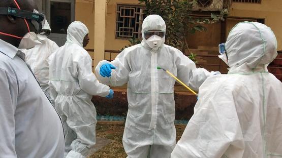 Veterinary Labs Receive Emergency Toolkits for Handling Disease Outbreaks