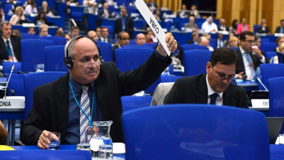 voting at the plenary