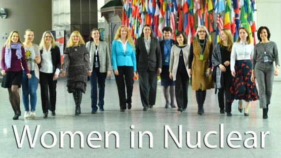 """<p>Despite increases in female enrolment in both secondary and higher education,women remain underrepresented in <em>science, technology, engineering and mathematics</em>, commonly referred to as """"STEM"""" subjects.</p> <p>We know that seeing role models in these fields can help counter stereotypes and unconscious biases about what a nuclear scientist looks like. This International Women's Day, some IAEA colleagues with STEM backgrounds shared their stories, hoping to inspire young women to pursue STEM careers.</p>  <p>We asked them about how they got interested in their academic subjects, challenges or highlights in their careers, and what advice they would give to youth considering careers in STEM.</p>"""