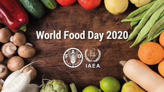 World Food Day 2020